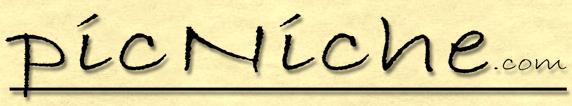 picNiche logo