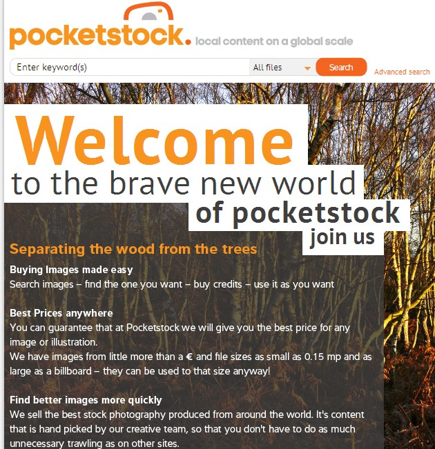 pocketstock home