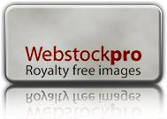 webstockpro logo